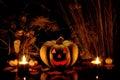 Halloween Pumpkin And Dry Plan