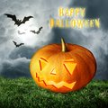 Halloween pumpkin on field Royalty Free Stock Image