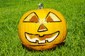 Halloween pumpkin on green grass Royalty Free Stock Photography