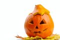 Halloween pumpkin Jack O'Lantern Royalty Free Stock Photo