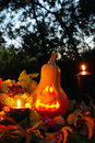 Halloween pumpkin lantern with autumn leaves and candies Royalty Free Stock Image