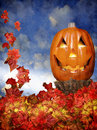 Halloween pumpkin with leaves a pile of fall surround a smiling jack o lantern Stock Photos