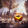 Halloween pumpkin in the park glowing inside dark autumn Stock Image