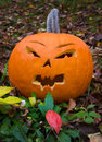 Halloween pumpkin with scary face Stock Photo
