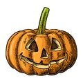 Halloween pumpkin with scary face. Vector vintage engraving illustration. Royalty Free Stock Photo