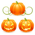 Halloween pumpkin set of pumpkins Stock Images