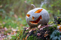 Halloween pumpkin with smoke in the forest lays on stump Royalty Free Stock Image