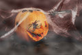 Halloween pumpkin with spiders on a black background and spider webs and a knife Royalty Free Stock Photography