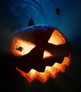 Halloween pumpkin and spiders jack o lantern with in the woods Stock Images
