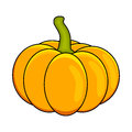 Halloween pumpkin vector illustration isolated on white background. Royalty Free Stock Photo
