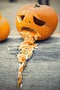Halloween pumpkin vomit throw up on the tree trunk Royalty Free Stock Photo