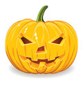 Halloween pumpkin on white background Royalty Free Stock Images