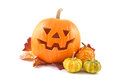 Halloween pumpkin on white background autumn decoration Stock Images