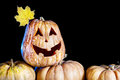 Halloween pumpkin with yellow maple leave at black background Royalty Free Stock Images