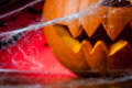 Halloween pumpkins ambient light colorful concept of scary Royalty Free Stock Image