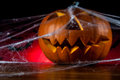 Halloween pumpkins ambient light colorful concept of scary Royalty Free Stock Images