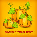 Halloween pumpkins big with green leaves on yellow vector illustration Stock Photo