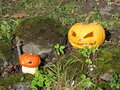 Halloween pumpkins on the grass Royalty Free Stock Image