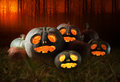 Halloween pumpkins at night Royalty Free Stock Image