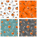 Halloween pumpkins and skeleton backgrounds Royalty Free Stock Images