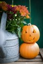 Halloween pumpkins on wooden ground Royalty Free Stock Photos