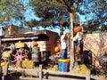 Halloween pumpkins working in Disneyland Paris