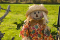 Halloween scarecrow Royalty Free Stock Photo
