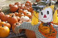 Halloween Scarecrow & Pumpkin Patch Royalty Free Stock Image