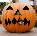 halloween. Scared girl in a pumpkin Stock Photography