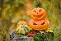 Halloween scary pumpkin in autumn forest Royalty Free Stock Photo