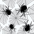 Halloween seamless  with  spiders and a web Stock Photography