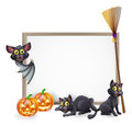 Halloween sign background a with pumpkins black witches cats and broomstick and vampire bat and copyspace for your text in the Stock Images