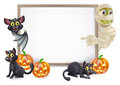 Halloween sign with mummy and bat or banner orange pumpkins black witchs cats witchs broom stick cartoon vampire Royalty Free Stock Photos