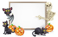 Halloween sign with skeleton and bat or banner orange pumpkins black witch s cats witch s broom stick cartoon Royalty Free Stock Photos