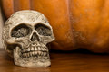 Halloween skull a decoration for a party Royalty Free Stock Image