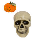 Halloween skull and pumpkin isolated on a white background Royalty Free Stock Images