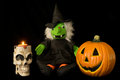 Halloween Skull, Witch & Jack O'lantern Stock Images