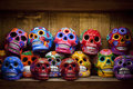 Halloween skulls day of the dead on a shelf for dias de los muertos Royalty Free Stock Image