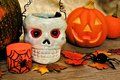 Halloween still life and autumn décor with skull and jack o lantern Stock Photo