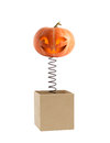 Halloween surprise smiling pumpkin head on metal spring jumping from box Stock Photography