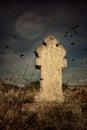 Halloween Terrible Cemetery Wi...