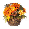 Halloween or Thanksgiving Bouquet with pumpkin and Autumn flowers in basket,  isolated Royalty Free Stock Photo