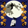 Halloween theme with pumpkins autumnal leaves flying witch tombstone raven and black cat Stock Photo