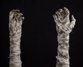 Halloween theme terrible old mummy hands on a black background studio Royalty Free Stock Image