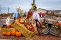 Halloween Themes Royalty Free Stock Photo