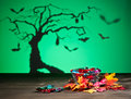 Halloween tree bats and sweets golden leafs Stock Photos