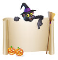 Halloween witch cat scroll a sign with a character above the banner pumpkins and s hat and broomstick Royalty Free Stock Photo