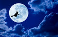 Halloween Witch Flying Moon Sky Royalty Free Stock Photo