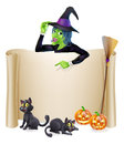 Halloween witch scroll banner a sign with a character above the and pumpkins s cats hat and broomstick Stock Image
