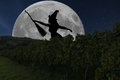 Halloween witch silhouette flying with broomstick. Full Moon Vin Royalty Free Stock Photo